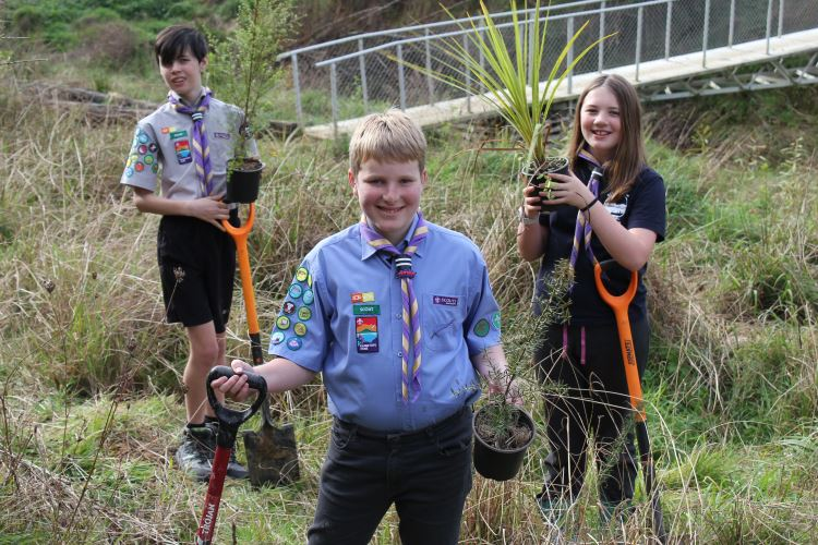 Planting native trees for the environment