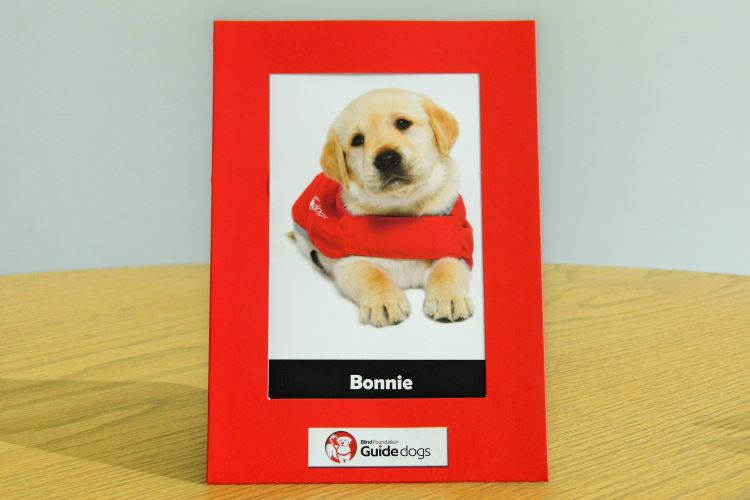 Bonnie, the guide dog